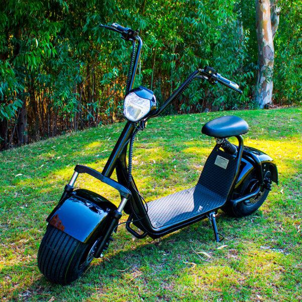 CityCoco eléctrico 1400W