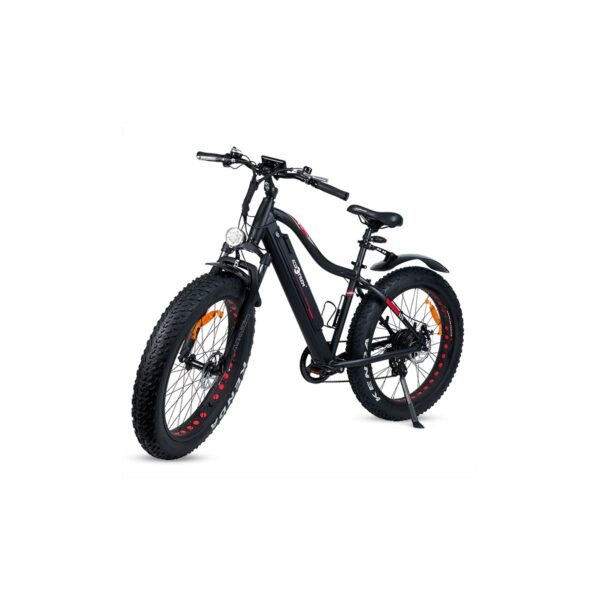 Fat bike eléctrica 29""